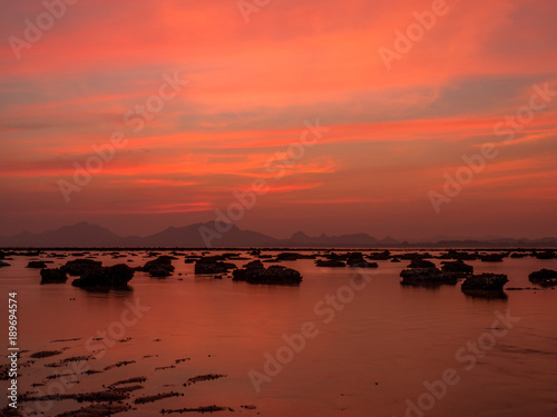 Fotobehang Koraal sweet twilight at the beach