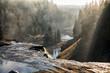 Morning Water Falls