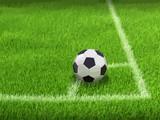 Soccerball on grass - 189732312