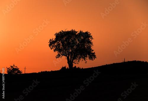 Foto op Aluminium Oranje eclat Sunset