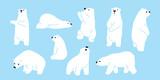 Bear polar bear teddy vector icon character cartoon doodle illustration - 189766368