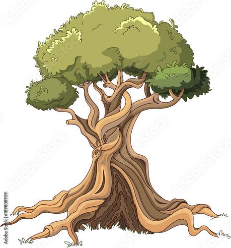 Foto op Canvas Sprookjeswereld Majestic Tree