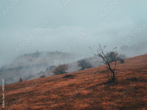 Deurstickers Diepbruine Teteven, Babintsi, Bulgaria