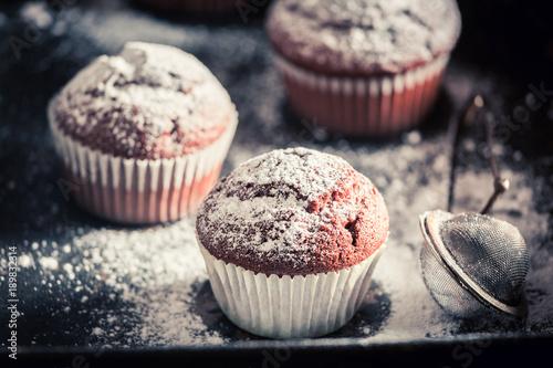 Closeup of sweet chocolate muffin with powdered sugar