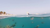 Underwater surface split view of coral fish and resort beach wit - 189834710