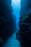 海中クレパス - 189840152