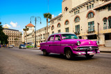 Rose old american classical car in road of old Havana (Cuba)