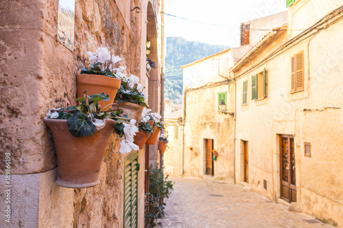 Wall Murals Narrow alley Valldemossa Mallorca