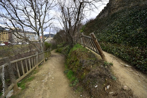 Fotobehang Weg in bos camino