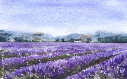 Landscape with Lavender Field © val_iva
