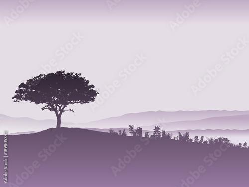 Foto op Canvas Lavendel Tree landscape