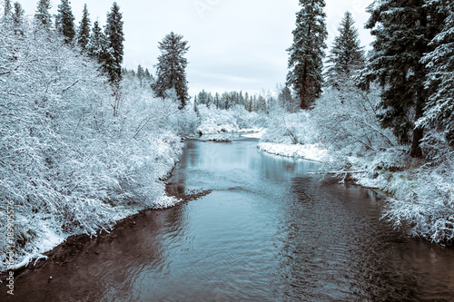 Foto op Canvas Herfst Autumn snow on the Whitefish River, Montana