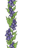 vector color violet meadow flowers vertical seamless border on white - 189919198