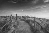 Beautiful black and white sunrise landscape image of sand dunes system over beach with wooden boardwalk - 189931998
