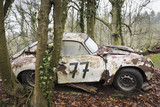 Abandoned sports car decaying in a forest