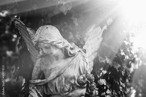 angel in the sunlight (antique statue) - 189978531