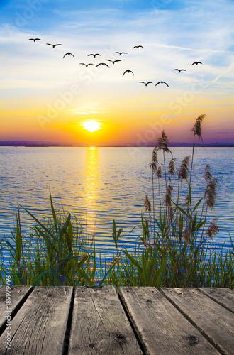 Fotobehang Blauwe hemel paisaje de un atardecer en la orilla del mar