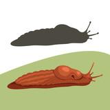 slug snail  cartoon...