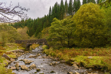 A stone bridge over the Caerfanell river in Blaen-y-glyn near Torpantau, Powys, Wales, UK