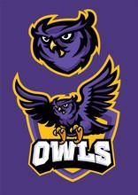 Sport Mascot Style Of Owl In Set Sticker