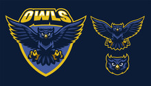 Sport Style Of Owl Mascot Sticker