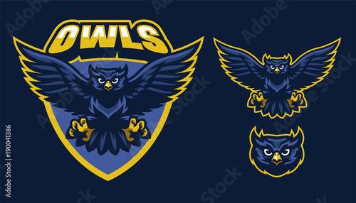 Foto op Canvas Uilen cartoon sport style of owl mascot