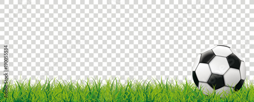 Fototapeta Football Grass Bokeh Background Transparent Header