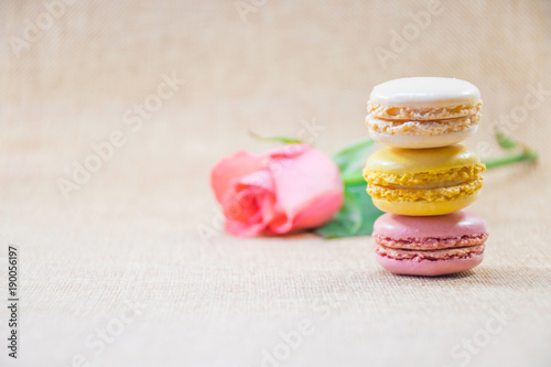 Foto op Aluminium Macarons Sweet macaron with background blurry branch of sweet pink rose