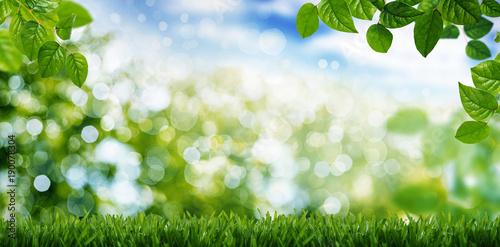 Deurstickers Gras Naturlandschaft Wiese Himmel, Banner, Gras, Baum