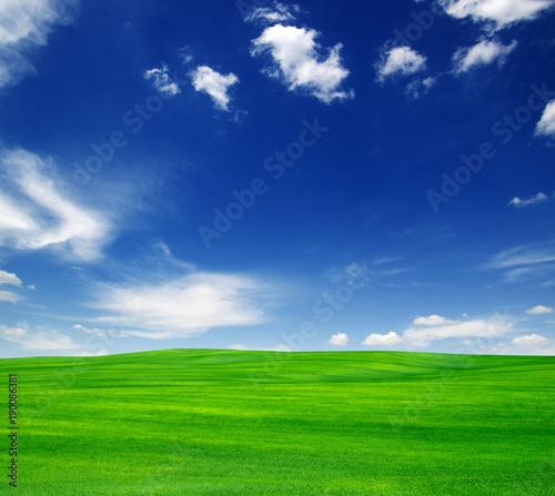 Deurstickers Gras field and sky