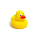 Yellow rubber duck on white - 190086558