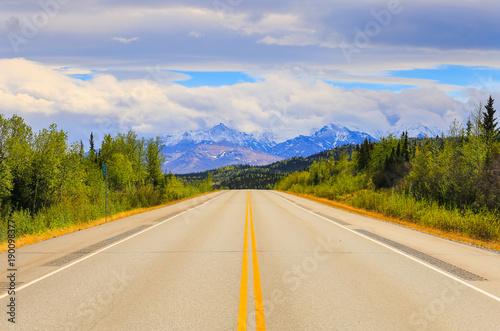 Driving Through Alaska Poster