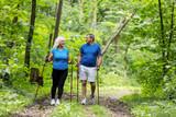 Elderly couple enjoying summer walk in the forest. - 190100727