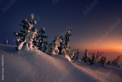 Foto op Plexiglas Ochtendgloren Beautiful view of sunrise at Babia mountain.