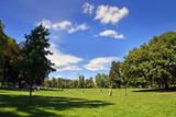 Torino Parco di Città Panorama di un Bel Parco Piemonte Italia Europa. Turin City Park Beautiful Panorama of a Park Piedmont Italy Europe - 190129180
