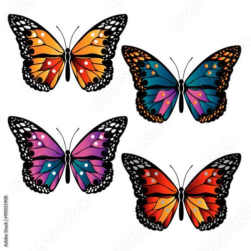 multicolored butterflies set