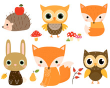 Cute  Set  Woodland Animals In Flat Style For Children Designs And Greeting Cards Sticker
