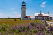 A vacation to Cape Cod is not complete without seeing lighthouses.