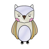 grated cute owl wild animal of the forest