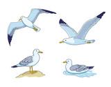 Seagulls - vector illustration