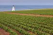 Cape Tryon Lighthouse on Prince Edward Island