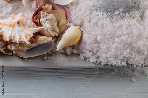 Fotobehang Spa Sea salt with stones and shells.