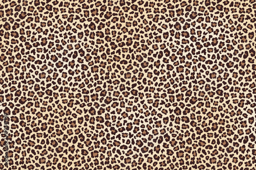 Leopard spotted fur texture © lavabereza