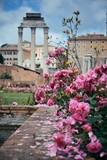 Rome Forum - 190243343