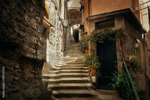 Riomaggiore alley