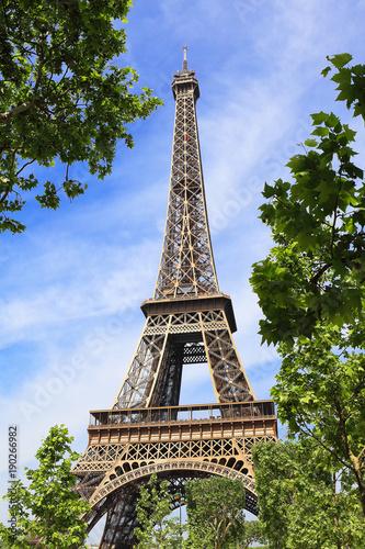 Foto op Plexiglas Eiffeltoren Eiffel tower in the embrace of nature
