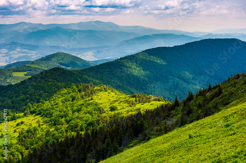 Foto Murales mountainous landscape with forested hills. beautiful summer scenery on a cloudy day
