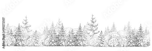 Leinwandbild Motiv Winter  forest   drawing  in black and white, seamless element, isolated border.