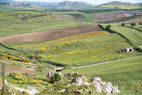 Fotobehang Pistache Campagna Nissena Caltanissetta Sicilia