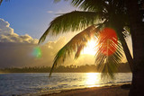 Tropical sunrise with coconut palm tree.